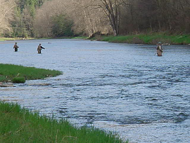 Fishing in oil creek state park for Pa out of state fishing license